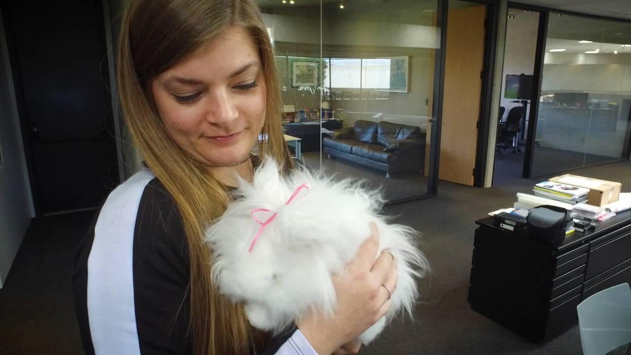 Nissan Design Center Bunny Visit