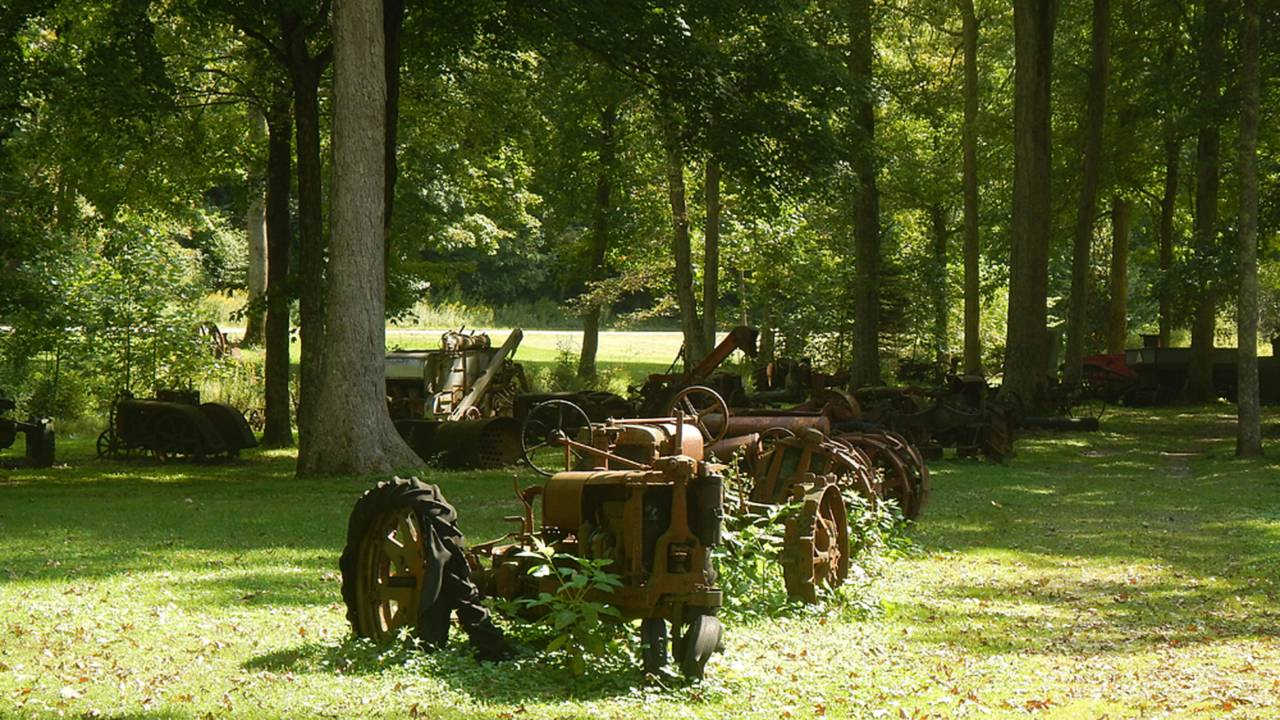 More rusting tractors than you've ever seen on one place.