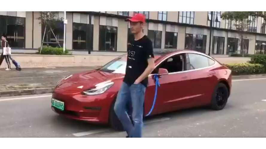 "Tesla Model 3 Owner Takes His Car For A ""Dog"" Walk: Video"