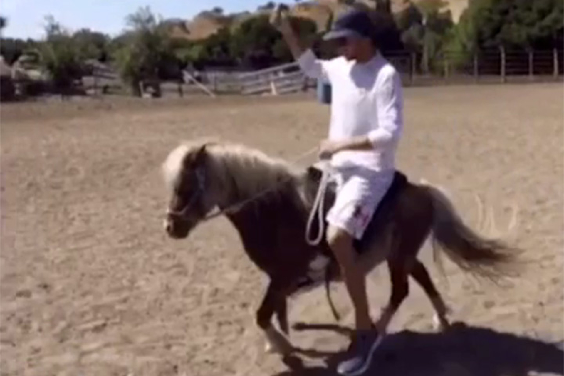 Its The Weekend Heres Steph Curry Riding A Mini Horse