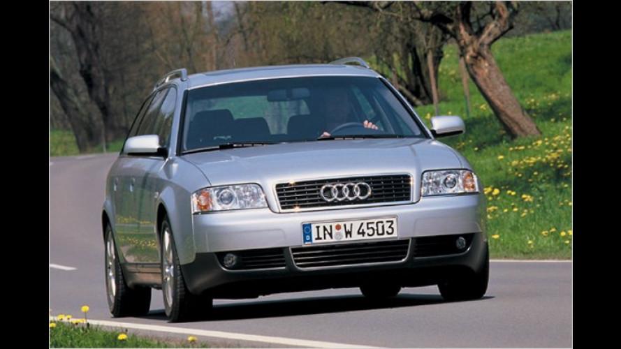 Die Lieblinge der Autodiebe 2009