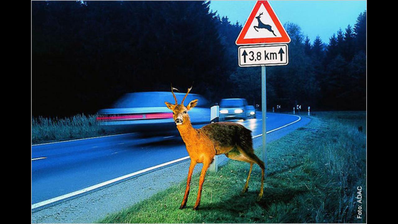 Unfallgefahren im Herbst