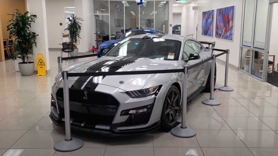 2020 Shelby GT500 Marked Up To Insane $206,000 Price Tag