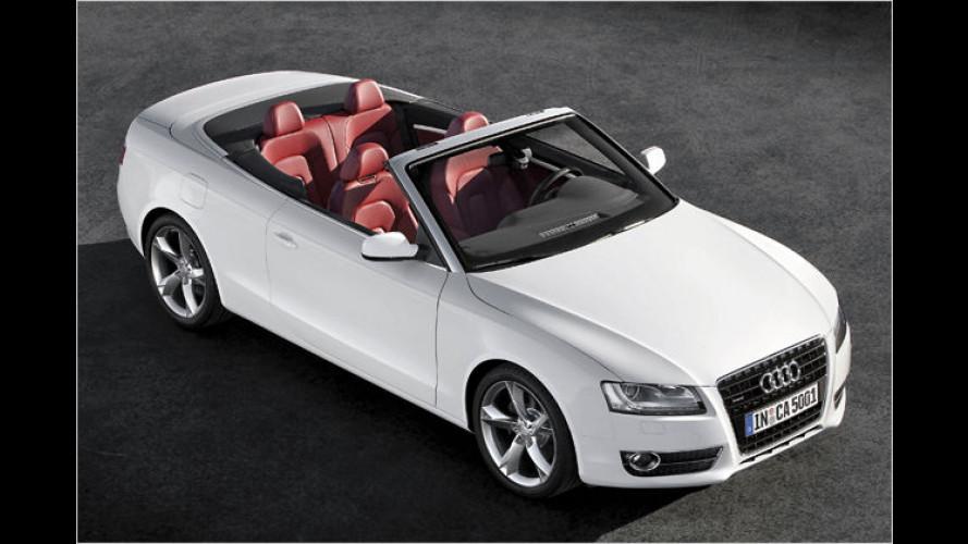 In Vorfreude aufs Frühjahr: Audi A5 und S5 Cabriolet