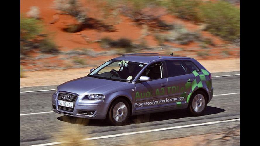 Down Under: Spar-Audi mit Rekordverbrauch
