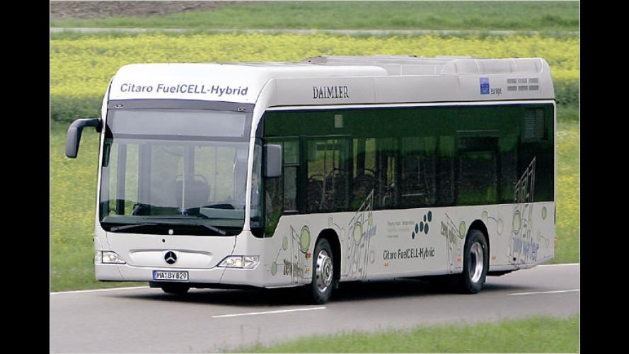 Brennstoffzellen-Bus: Mercedes Citaro FuelCell Hybrid (2009)