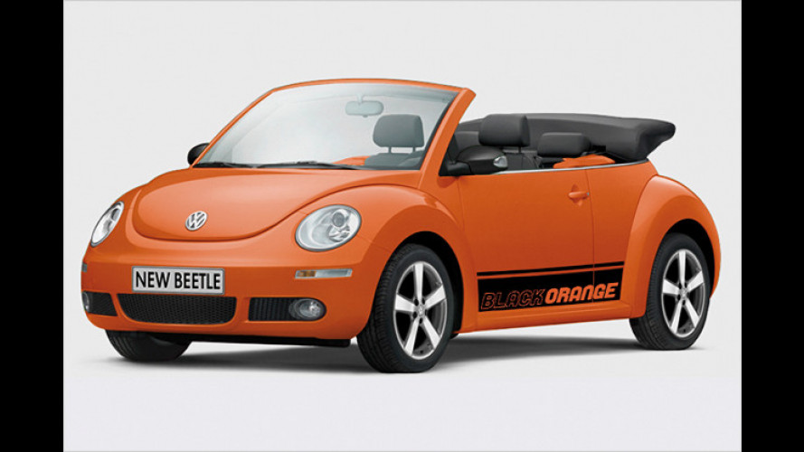 Volkswagen New Beetle BlackOrange: Ein toller Käfer