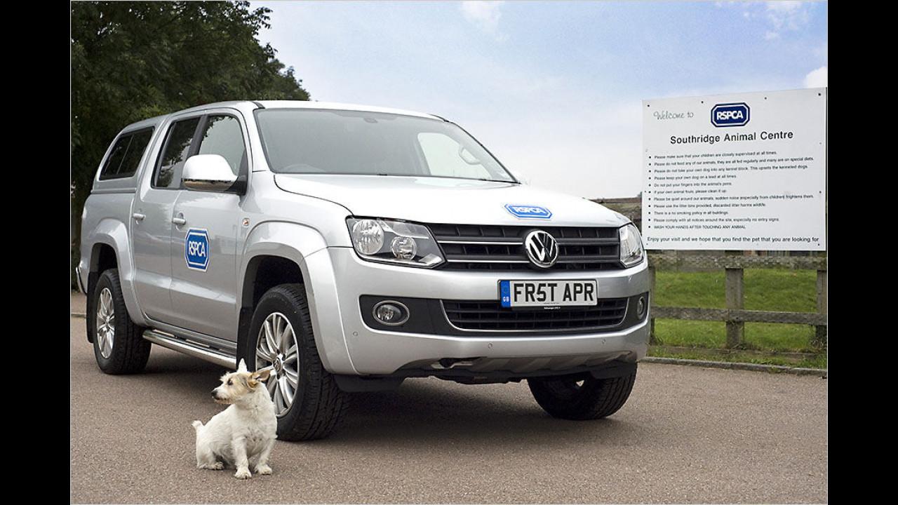 (2014) Volkswagen England: Rettungshunde fahren Auto