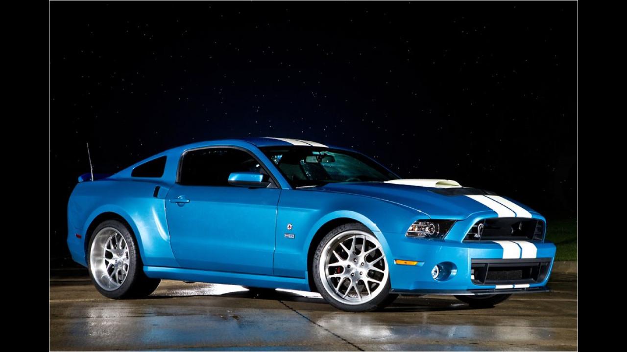 Bissigster Mustang