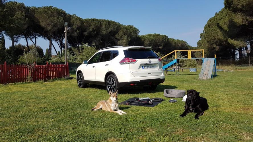"""Nissan X-Trail 4Dogs, abbiamo provato la prima """"auto per cani"""" [VIDEO]"""