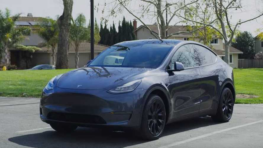Check Out This Comprehensive Tesla Model Y Support Video