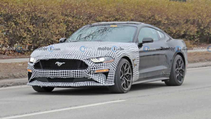Ford Mustang Test Mule Spy Photos