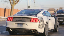 2016 Ford Mustang Shelby GT350 / GT500 spy photo