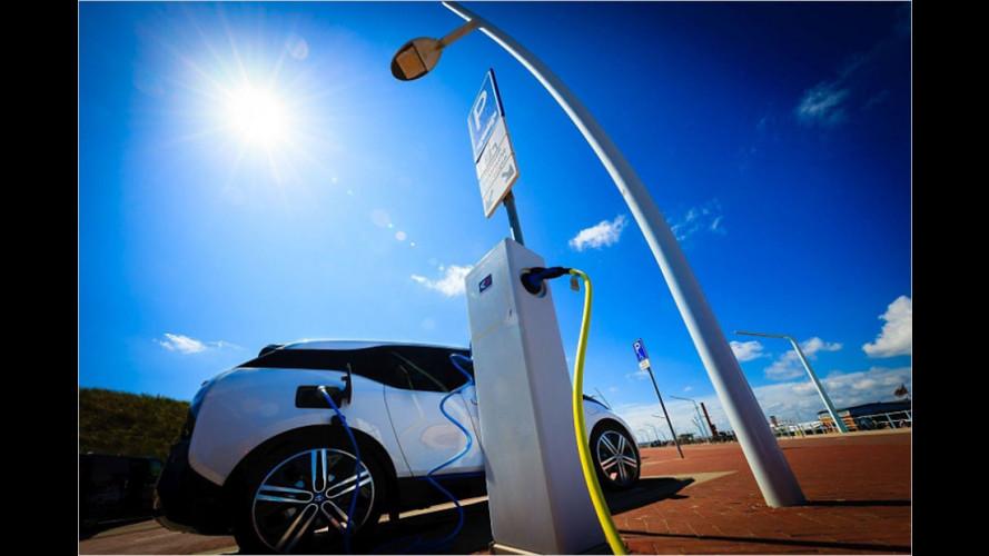 Holland macht sein Stromnetz intelligent
