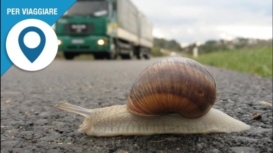 [Copertina] - Europa centrale, i limiti di velocità per chi viaggia in auto
