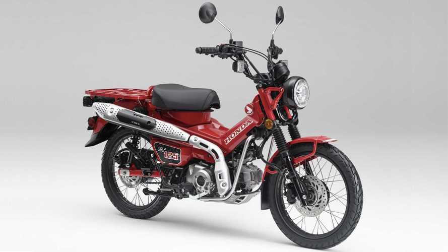 2021 Honda CT125 Hunter Cub: Everything We Know