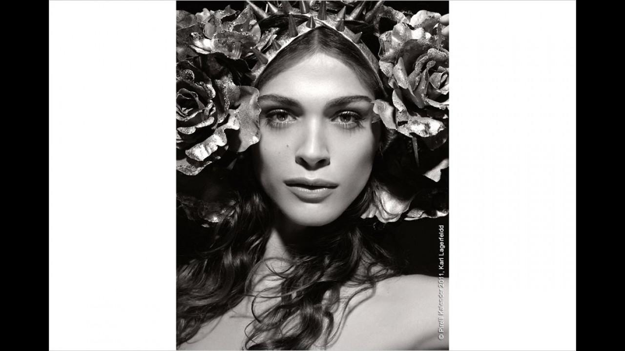 2011: Schön wie eine Rose