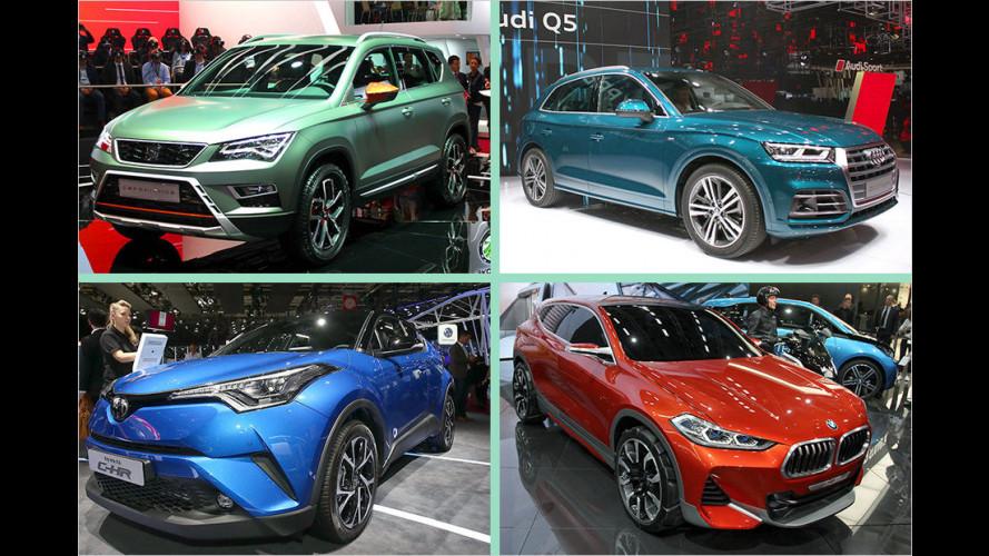Vom Audi Q5 bis zum Toyota C-HR