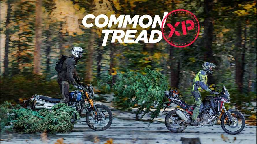Do Adventure Bikes Make The Merriest Christmas Tree Haulers?