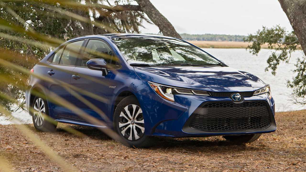 Toyota Corolla Lead