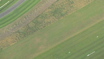 Crop Circles Appear at Goodwood
