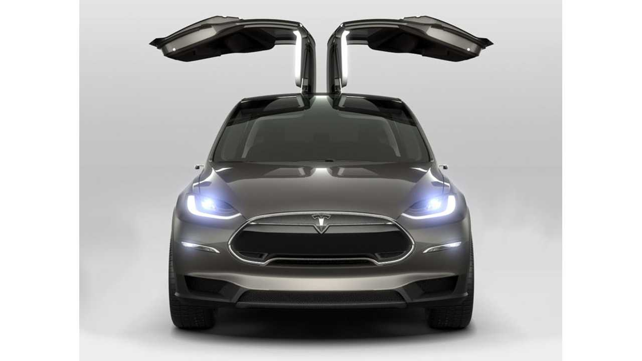 Happy Tesla Model X