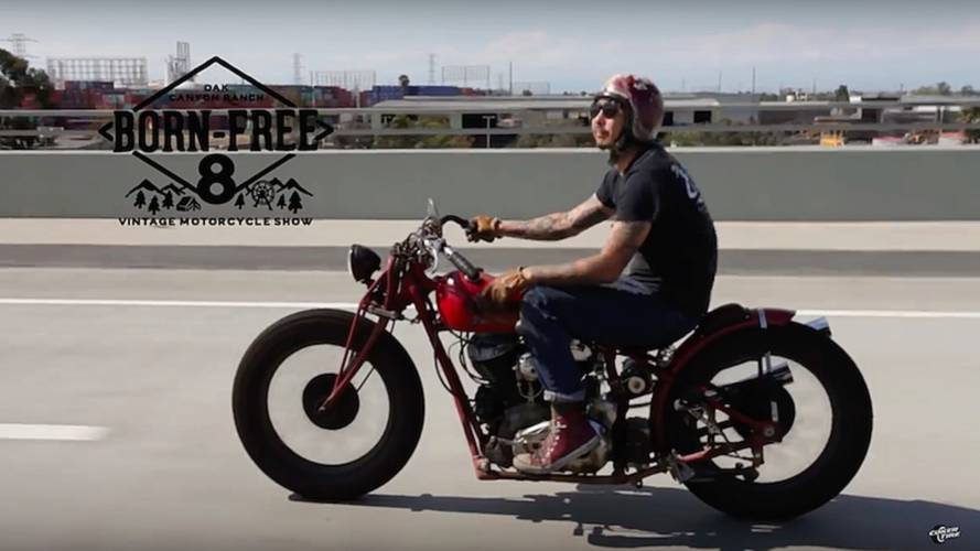 Coker Tires Offers Glimpse Behind Scenes of Born Free 8