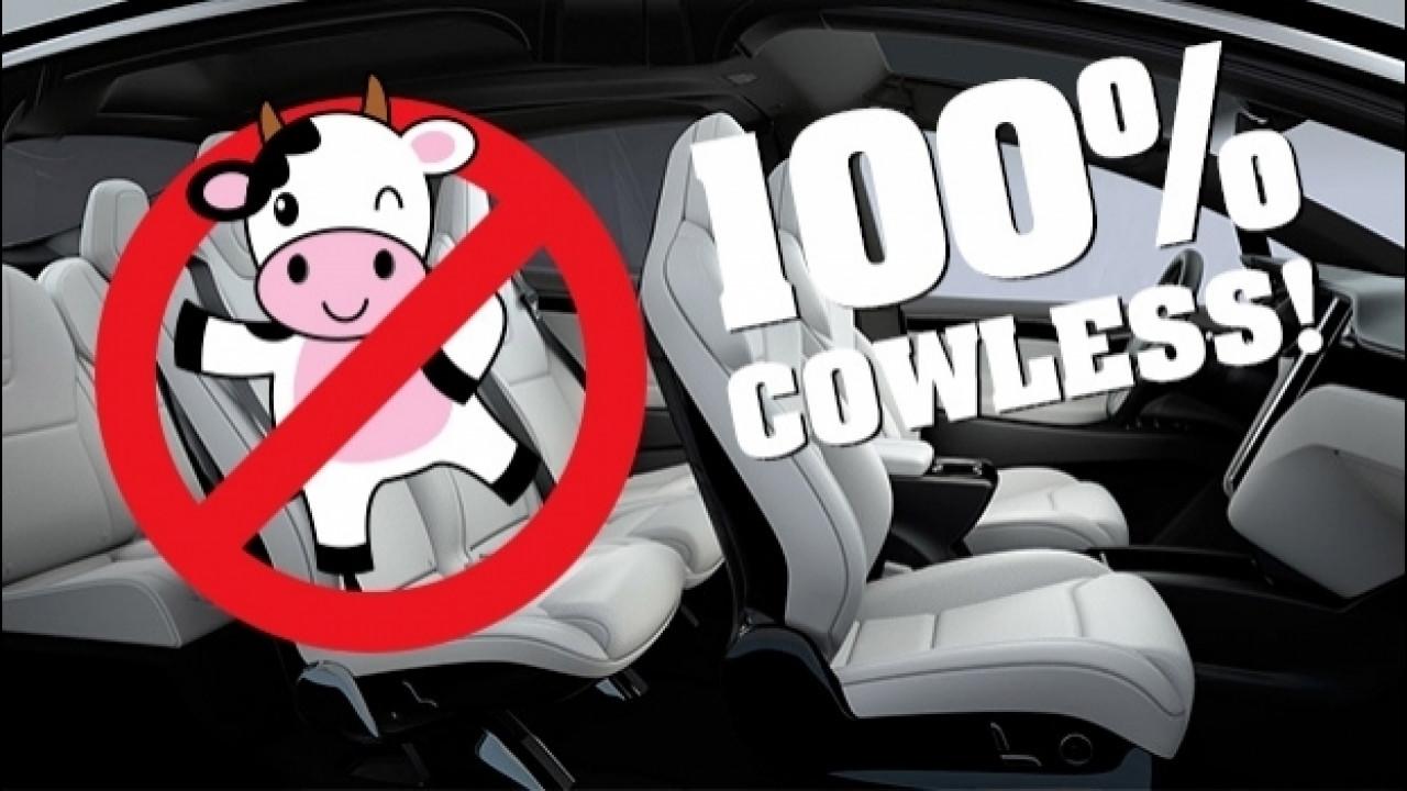 [Copertina] - Sono in arrivo le auto per vegani