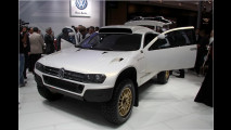 VW im Goldrausch