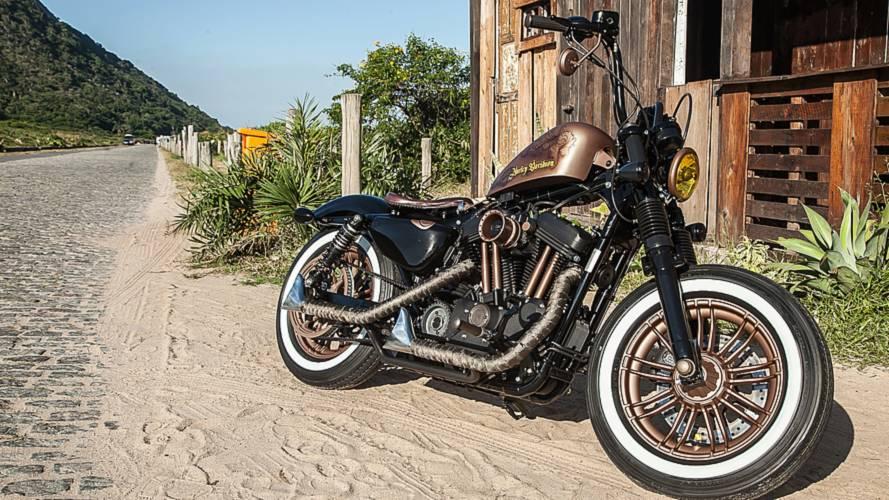 Harley-Davidson elege vencedora do