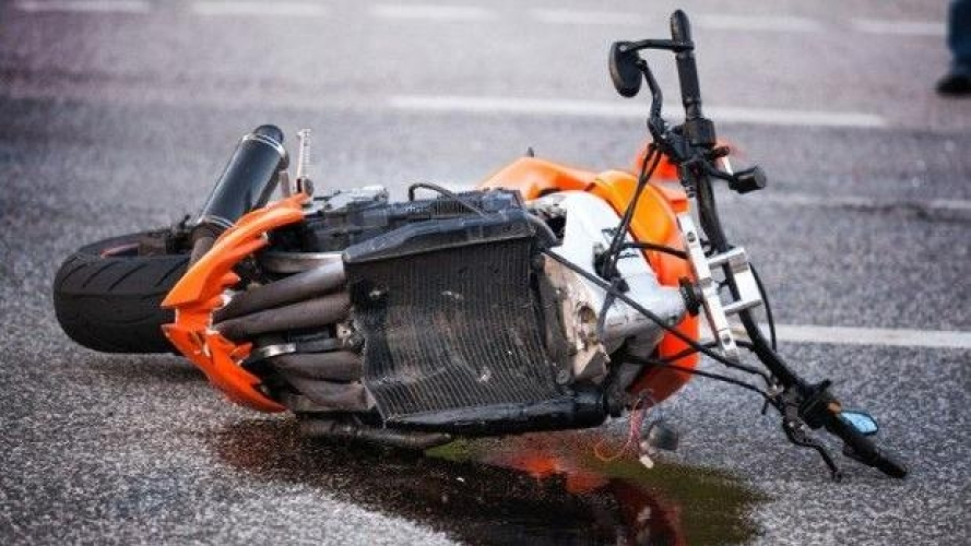 Incidenti con animali: brutti numeri per le moto