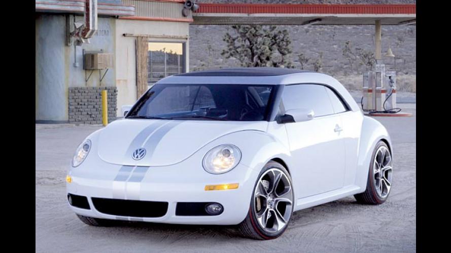 Oben-Ohne-Käfer mit Flachdach: VW Beetle Ragster
