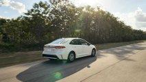 Toyota Corolla Hybrid 2020 (USA)
