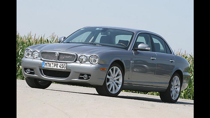 Diesel-Jaguar schnurrt leise: Feiner Liner für lange Strecken