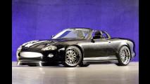 Schwarze Turbo-Mieze