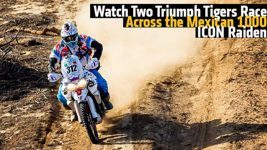 Watch Two Triumph Tigers Race the Mexican 1000 - ICON Raiden