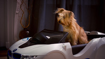 BMW dDrive panier pour chien