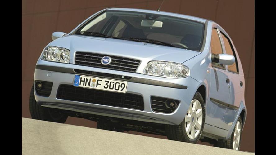 Fiat Punto Start: Einsteigen und starten für unter 10.000 Euro