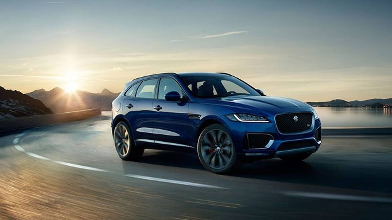 Jaguar 306 Adet