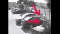 VÍDEO: A vingança veio na urina!