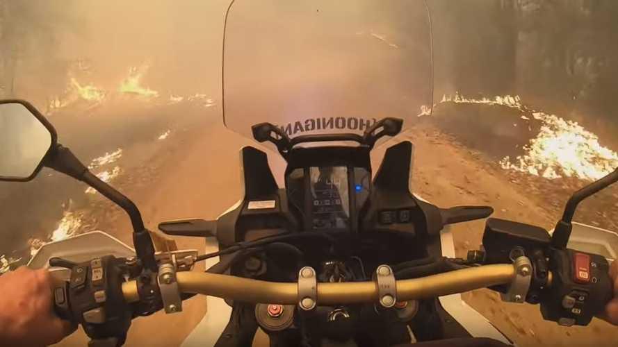 Africa Twin Rider Helps Fellow Evacuees Escape Aussie Bushfire