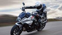2019 suzuki motorcycle lineup katana sv650