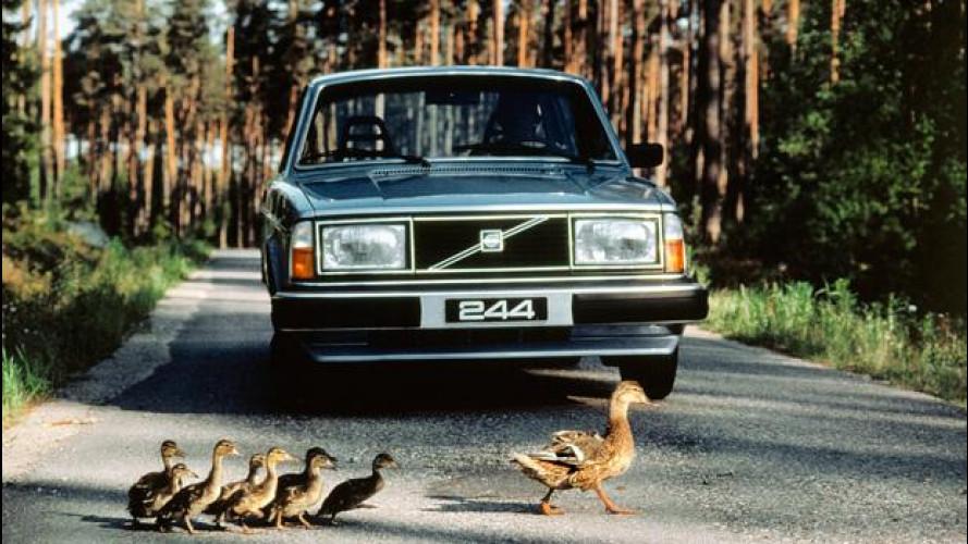 Volvo 240, la svedese dei record