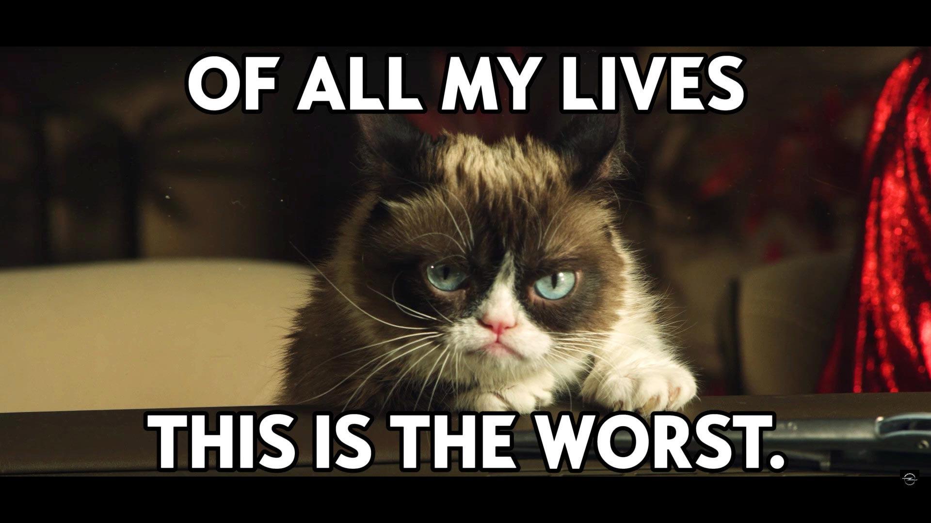 [Image: opel-grumpy-cat-calendar.jpg]