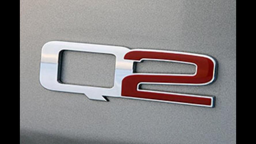 Audi Q2 e Q4, risolta la disputa con FCA