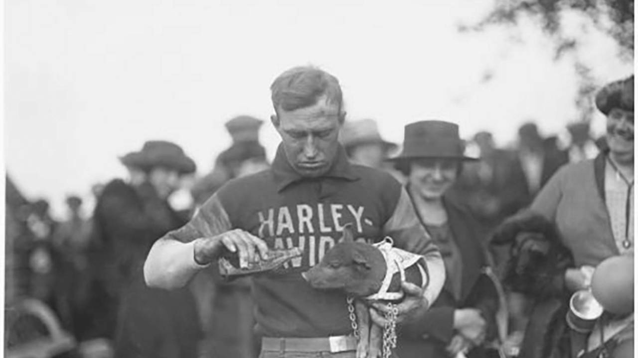 How Harleys Became Known as 'Hogs'