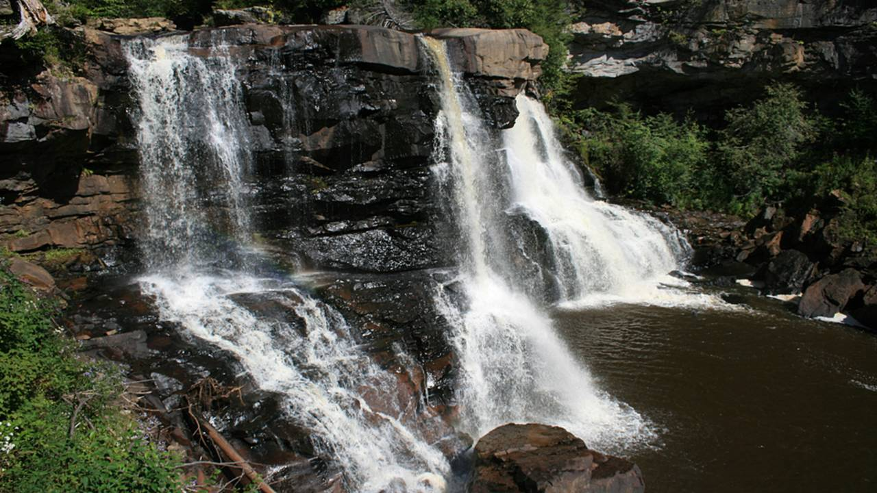 Blackwater Falls plunges over 60 feet to the river below.