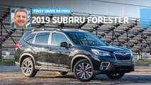 2019 subaru forester limited review