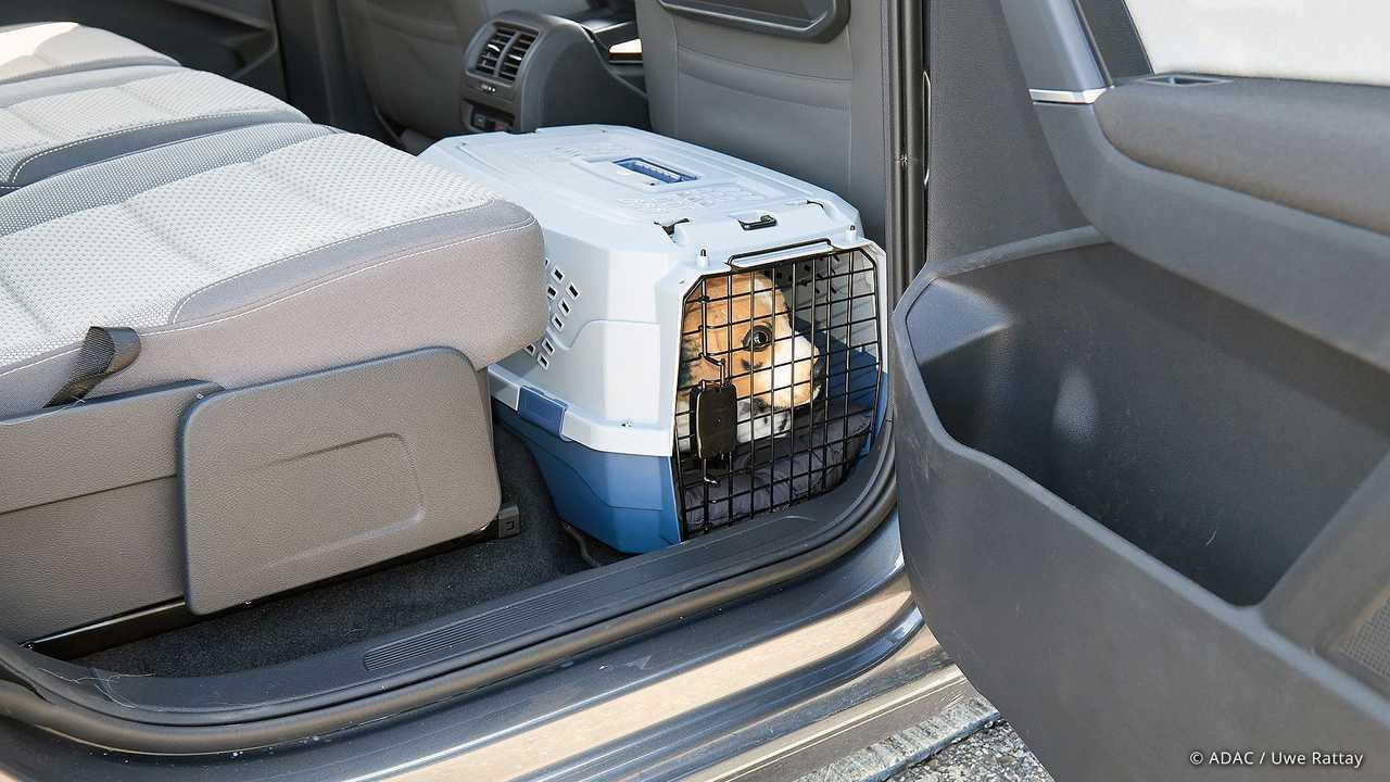 Собака в машине: обязательно закрепите своего четвероногого друга