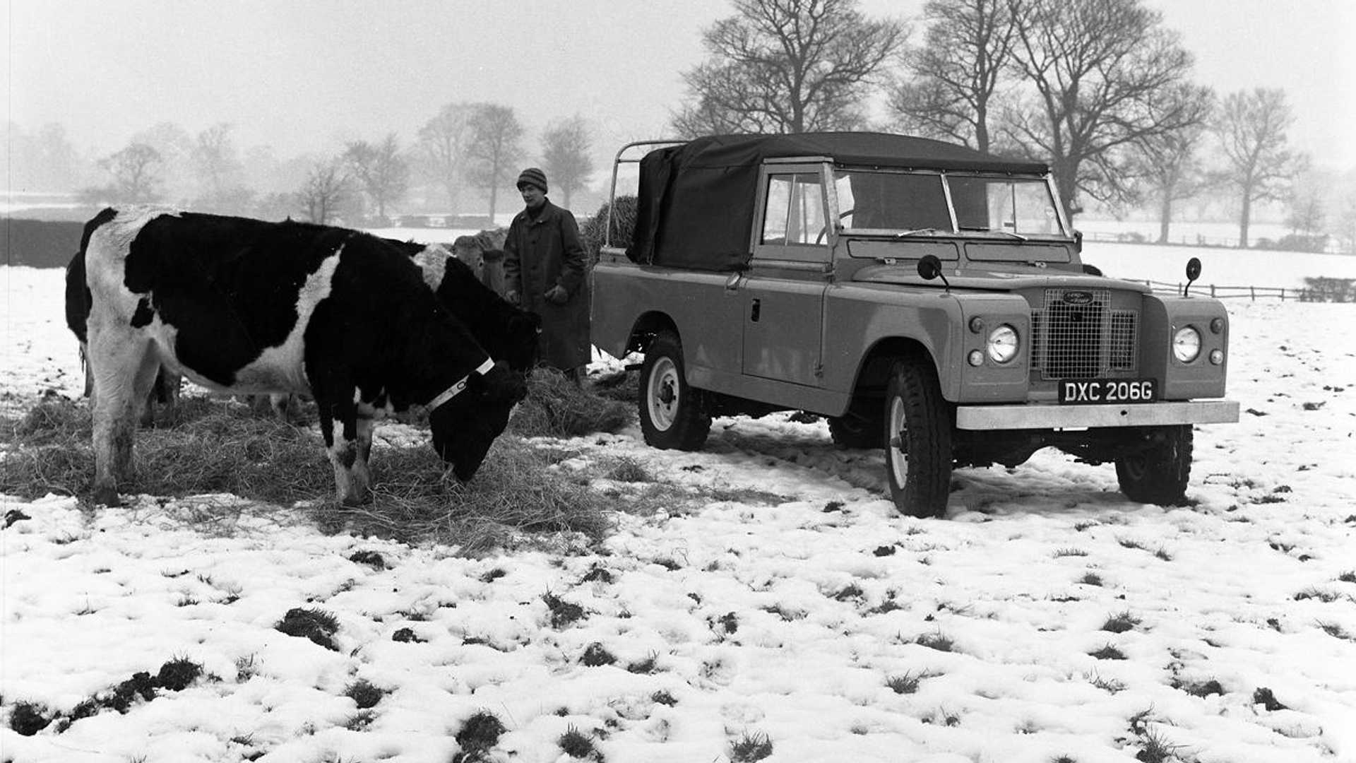 Land Rover Series II/IIA Buying Guide | Motorious